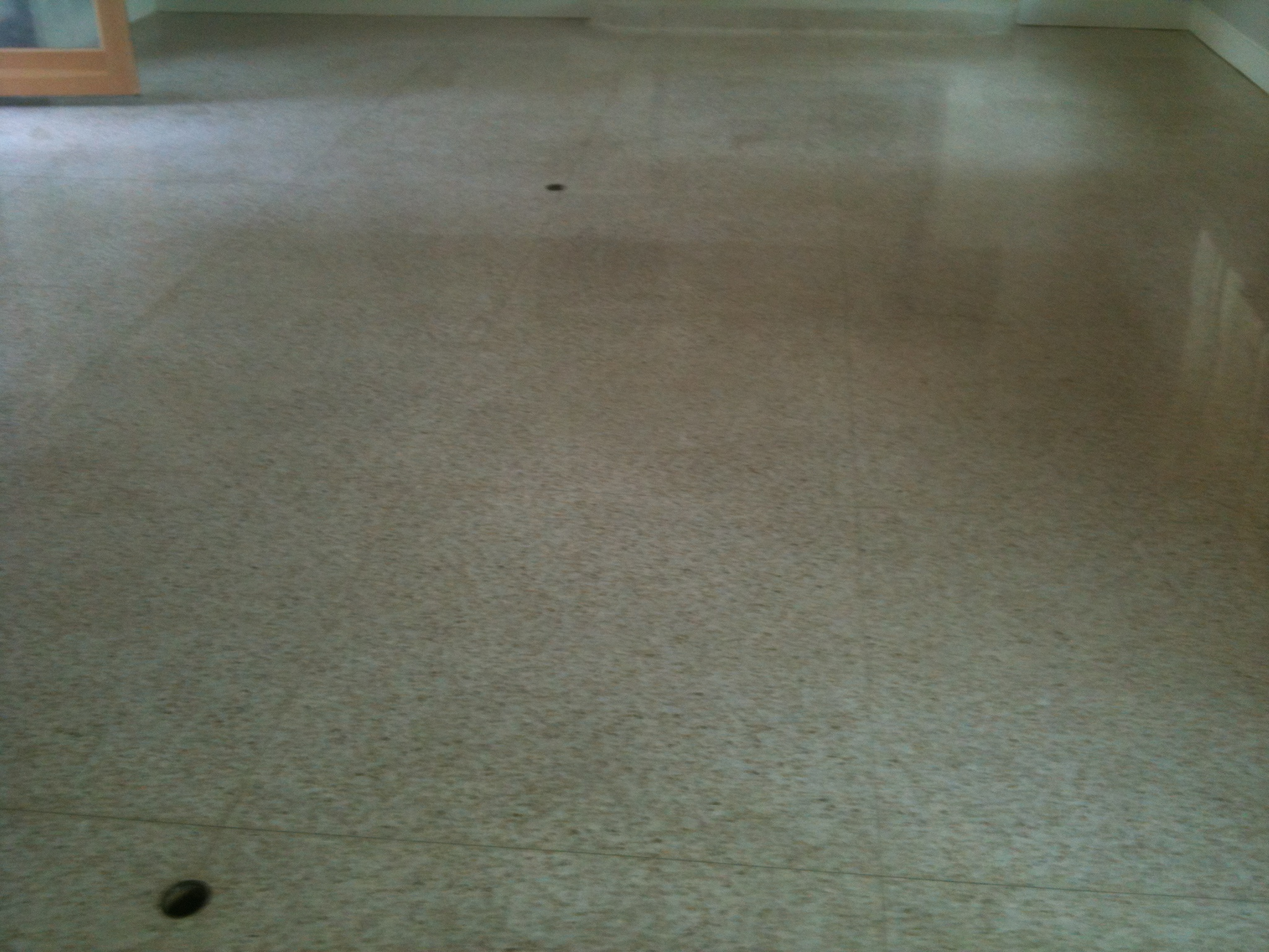 Terrazzo tile stain removal and restoration