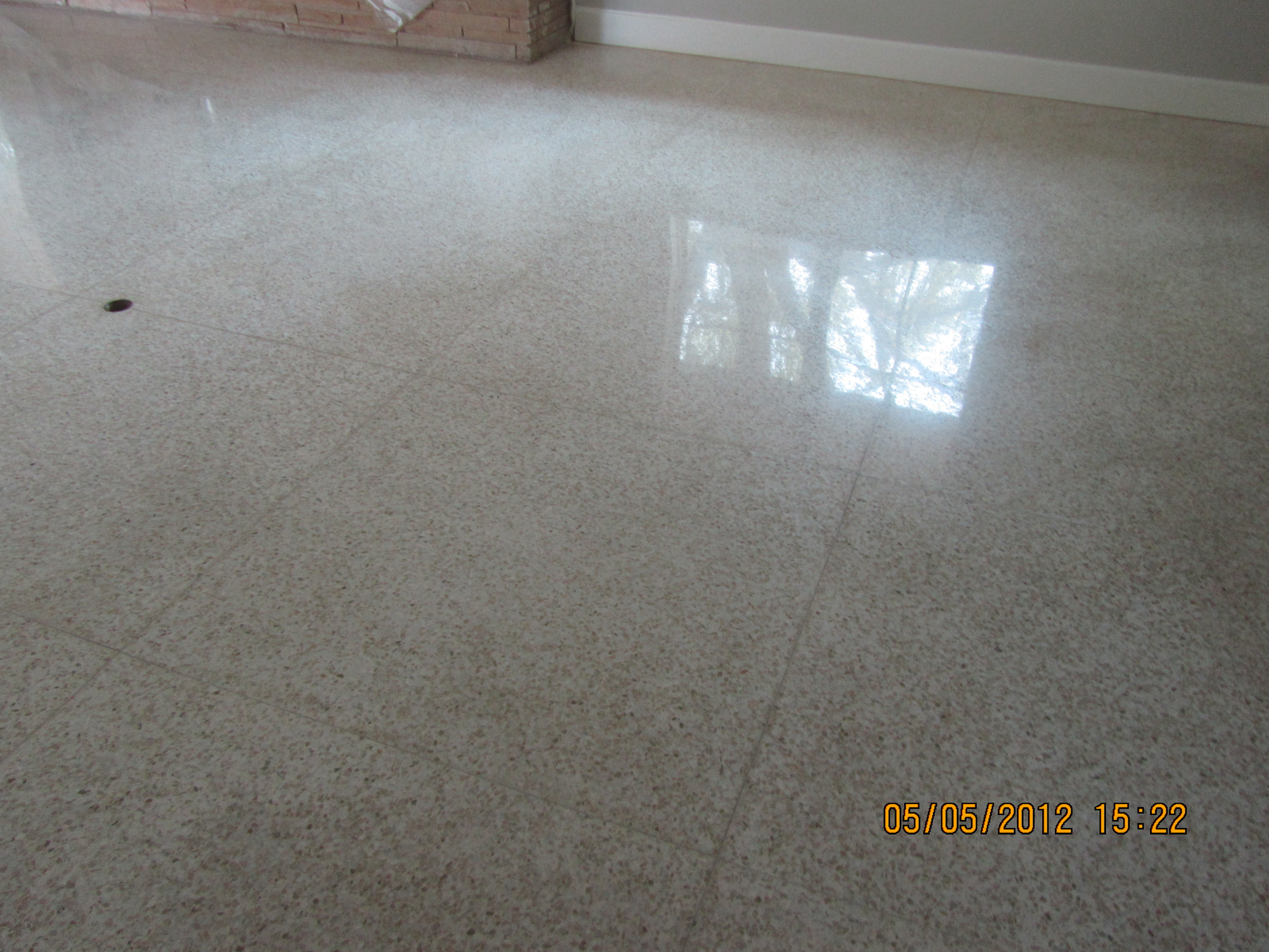 Terrazzo Tile Cleaned and Refinished