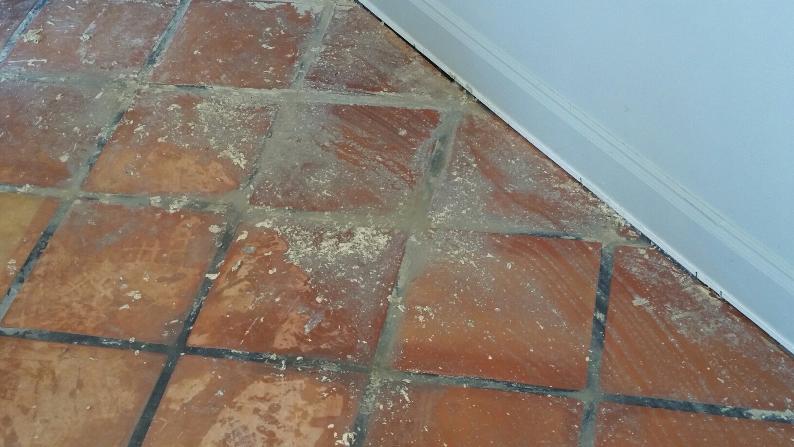 Scrubbing Grout Lines